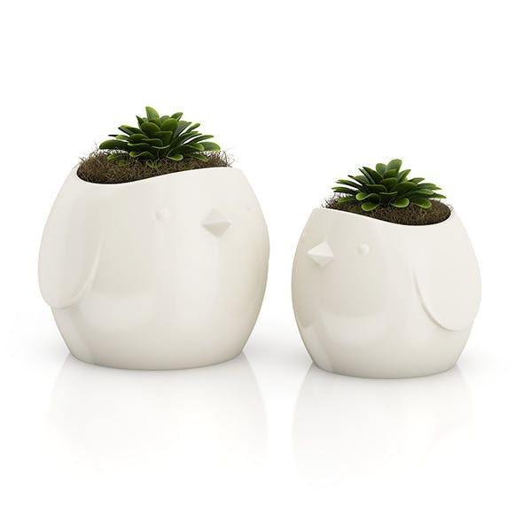 "Two Plants in ""Bird"" Pots - 3DOcean Item for Sale"