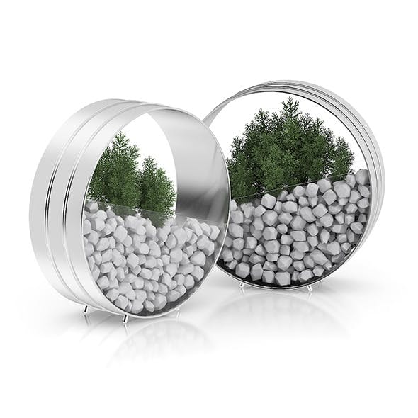 Two Plants in Round Metal Pots