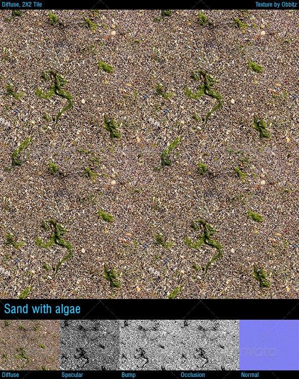 Sand with algae - 3DOcean Item for Sale