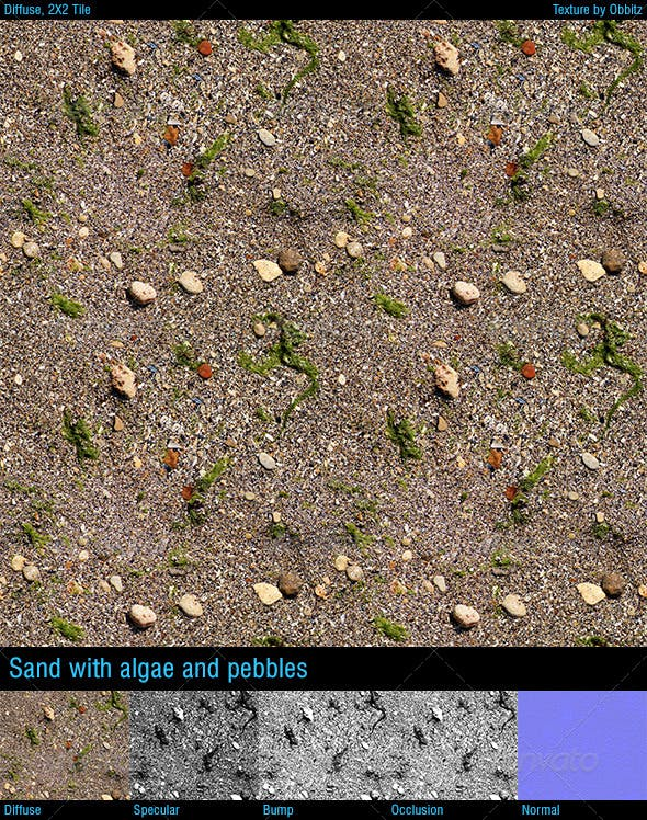 Sand with algae and pebbles - 3DOcean Item for Sale