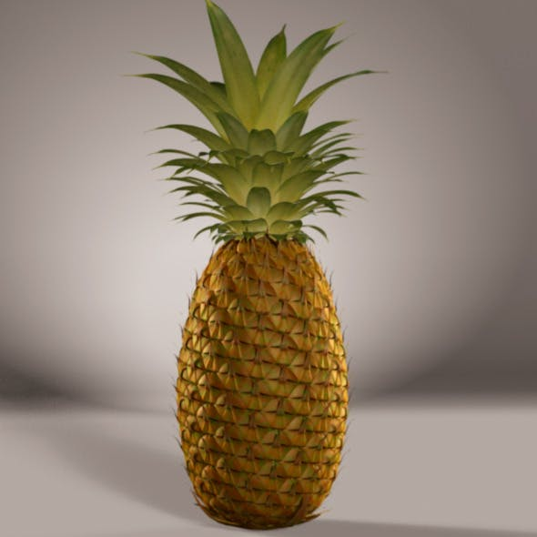 pineapple 3D model with textures