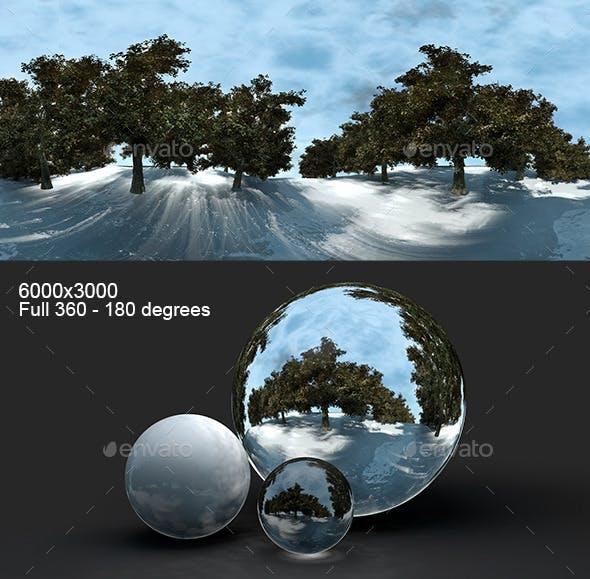 Snowy Road HDRI - 3DOcean Item for Sale