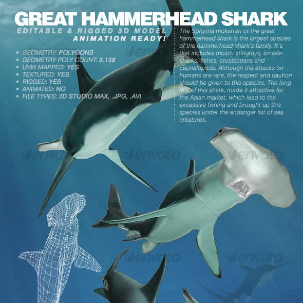 Great Hammerhead Shark rigged 3Ds model