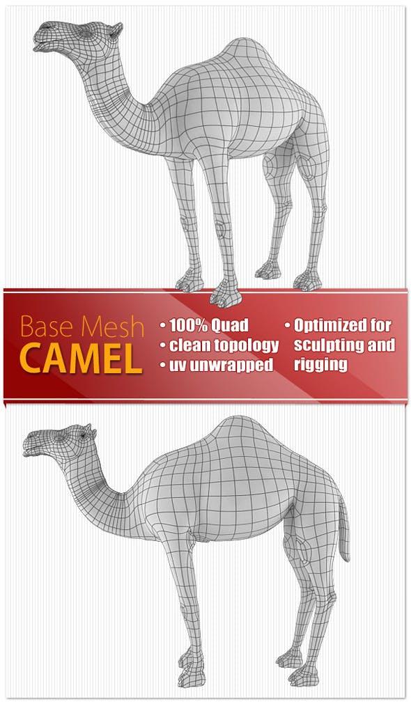 Camel - 3DOcean Item for Sale