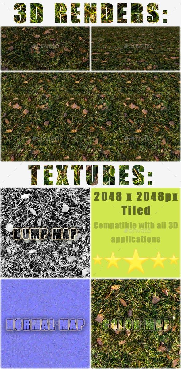 Autumn Grass Texture Tile - 3DOcean Item for Sale