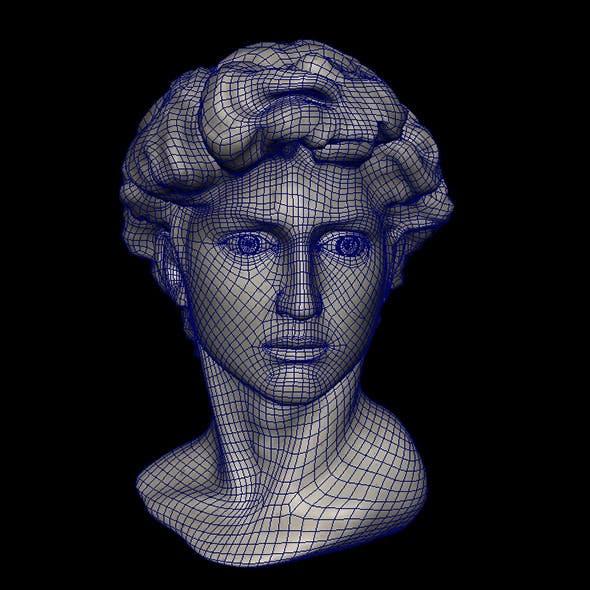 David head&blend shape - 3DOcean Item for Sale