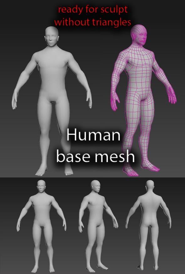 Human base mesh male - 3DOcean Item for Sale