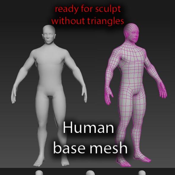 Human base mesh male