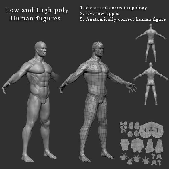 Male Human body High and Low poly Mesh