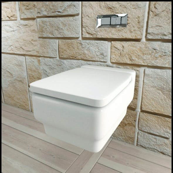 White Ceramic Toilet with Chrome Flush Plate