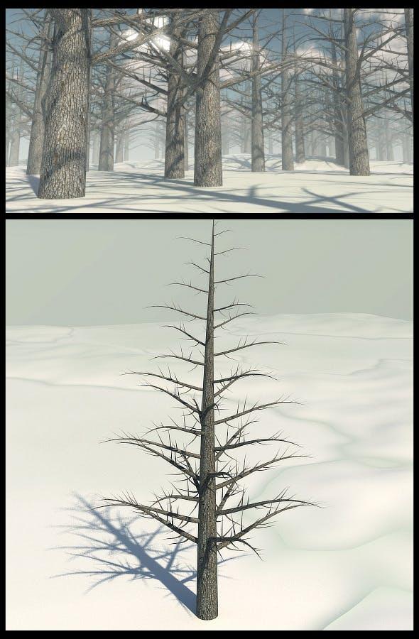 Dead Pine Tree - 3DOcean Item for Sale