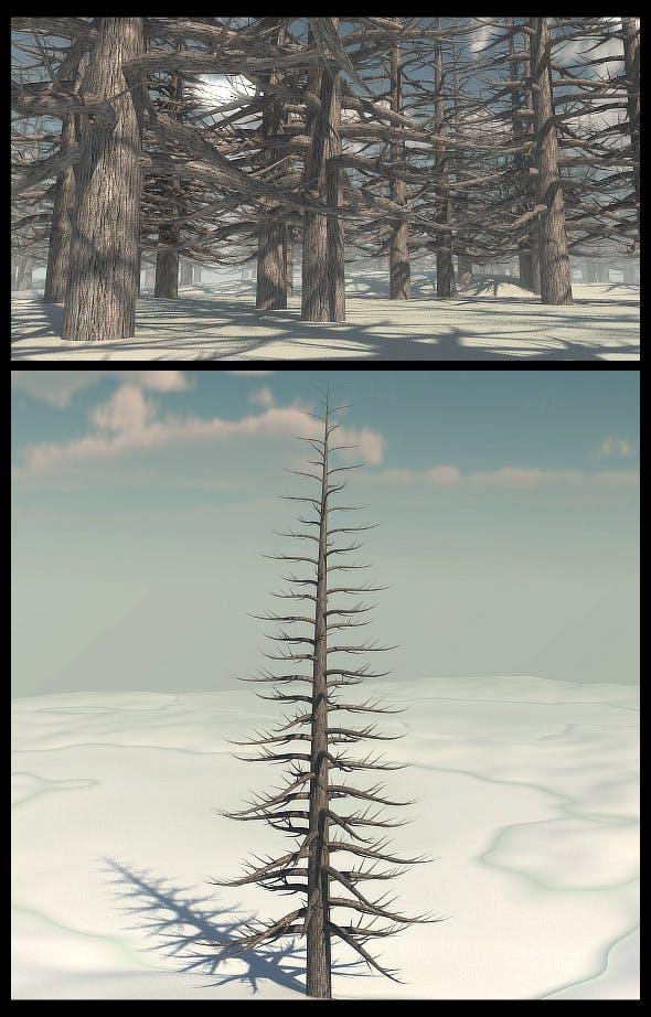 Dead Pine Tree V2 - 3DOcean Item for Sale