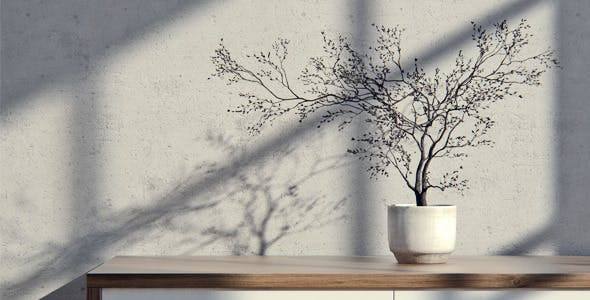 Tree In A Pot - 3DOcean Item for Sale