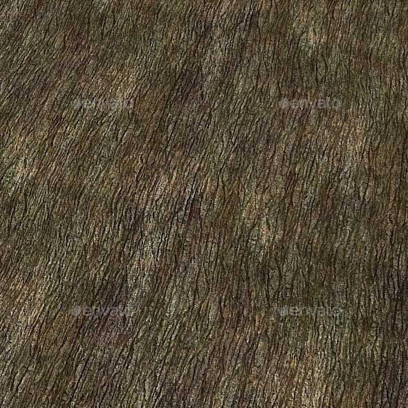 Tree Bark Texture (Seamless)