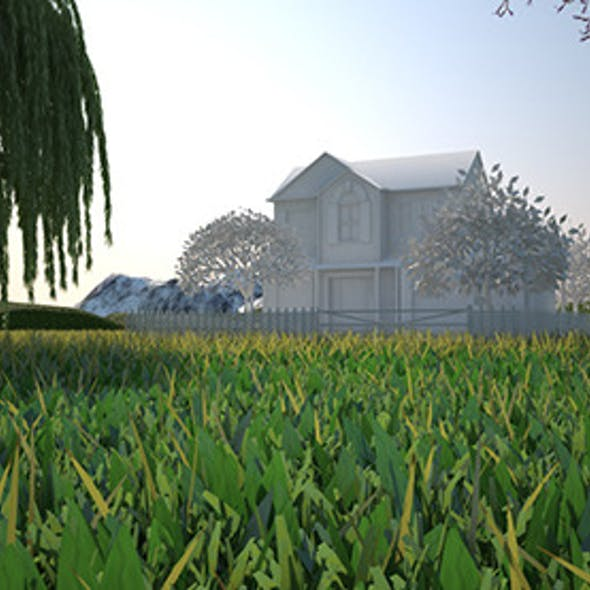 COMPLETE Environment + Grass Vray C4D