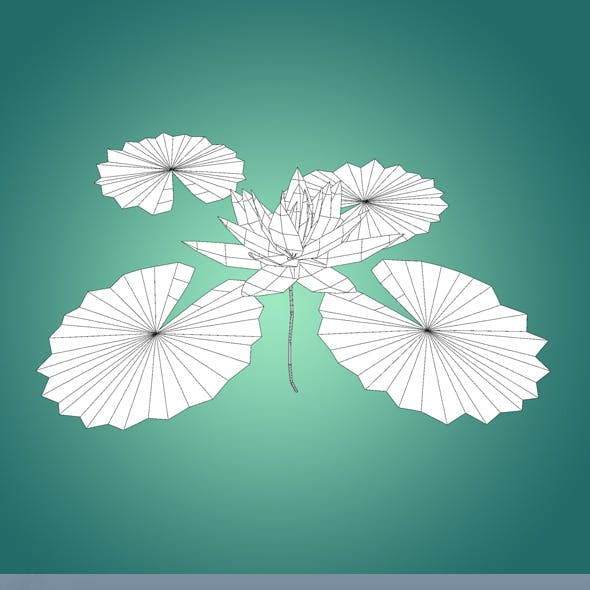 Low Poly Water Lily Flower