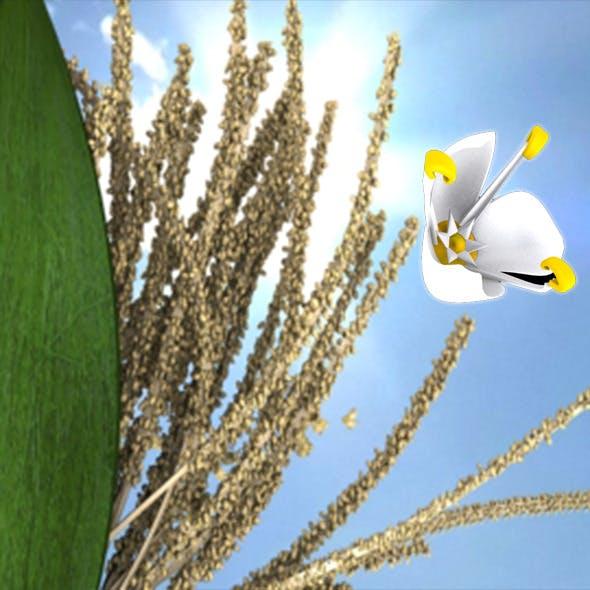 Coconet flower - 3DOcean Item for Sale
