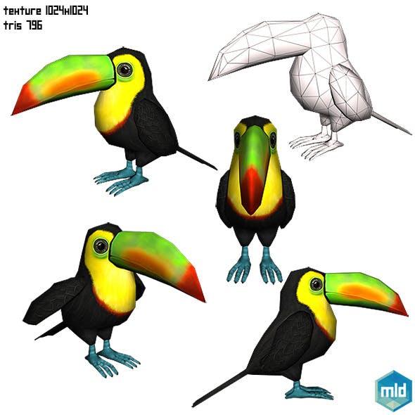Toucan Parrot