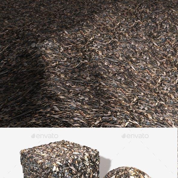 Garden Bark Seamless Texture