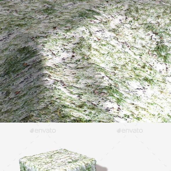 Snowy Grass Seamless Texture