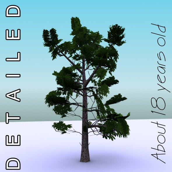 GameReady Low Poly Tree Pack 3 (Horse-chestnut)