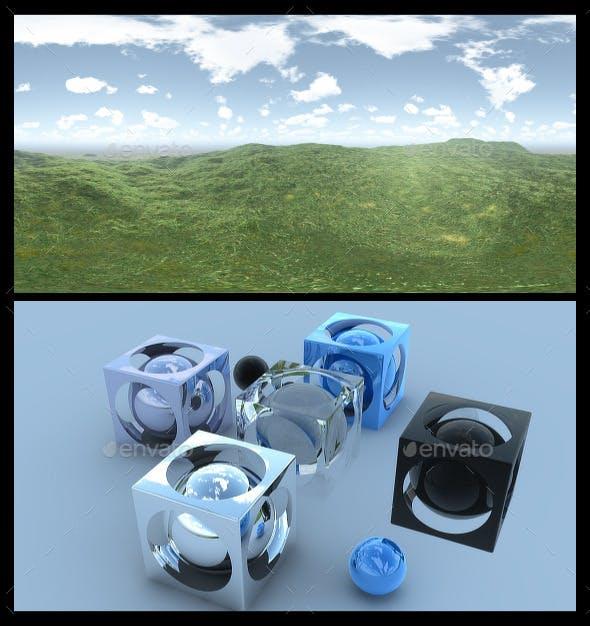 Open Grass Field - HDRI - 3DOcean Item for Sale