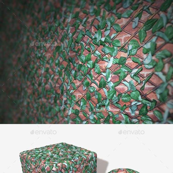Leafy Wall Trellis Seamless Texture