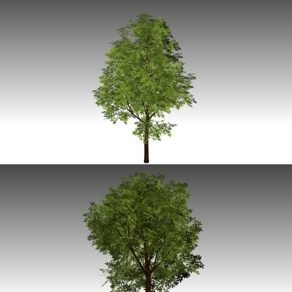 Low Poly Tree 2