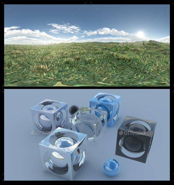 Open Grass Field 3 - HDRI - 3DOcean Item for Sale