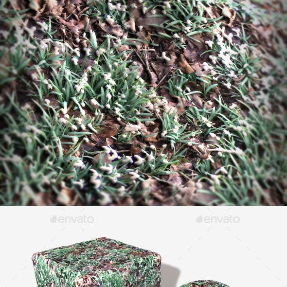 Winter Flowers Seamless Texture