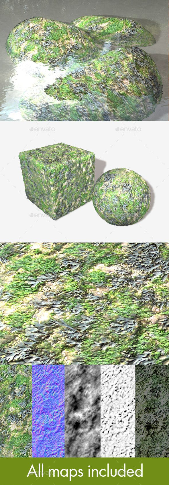 Seaweed and Moss Seamless Texture - 3DOcean Item for Sale