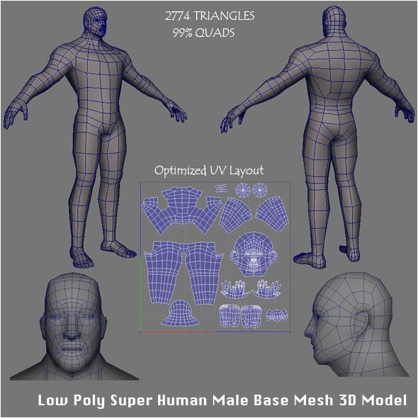 Low Poly Super Human Male Base Mesh 3D Model