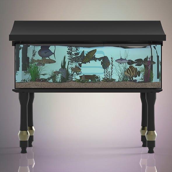 Fish Aquarium - 3DOcean Item for Sale
