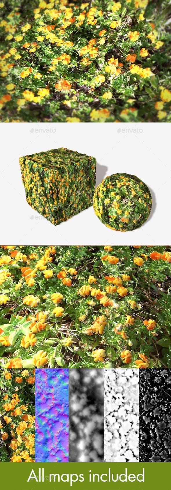 Orange Flowers Seamless Texture - 3DOcean Item for Sale