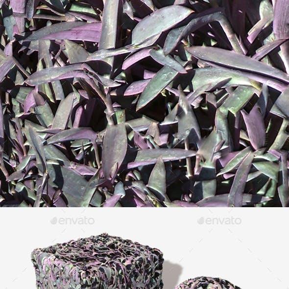 Purple Plants Seamless Texture.