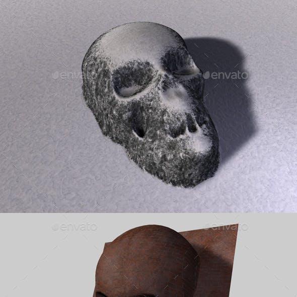 Skull Depth Map 1