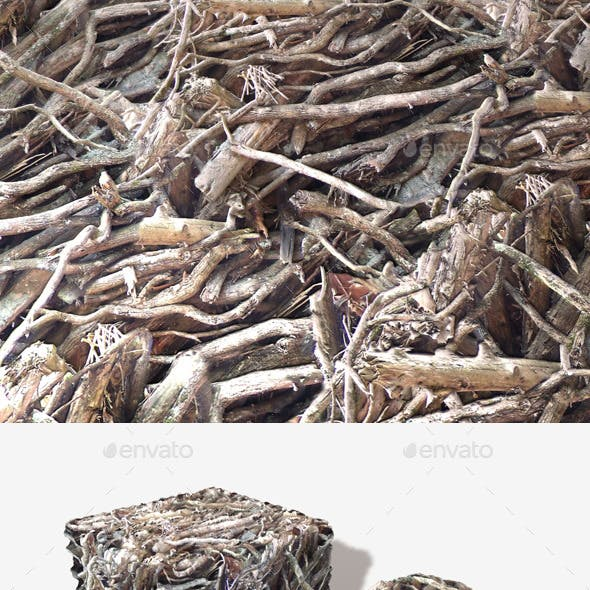 Twigs and Branches Seamless Texture