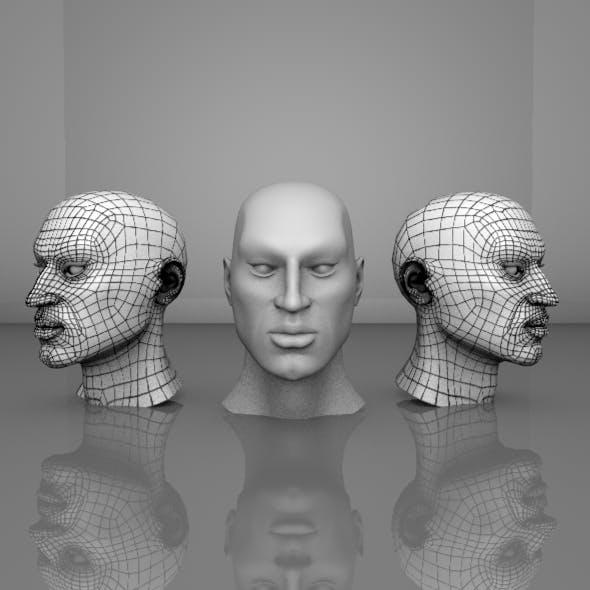 Human Head Mesh - 3DOcean Item for Sale