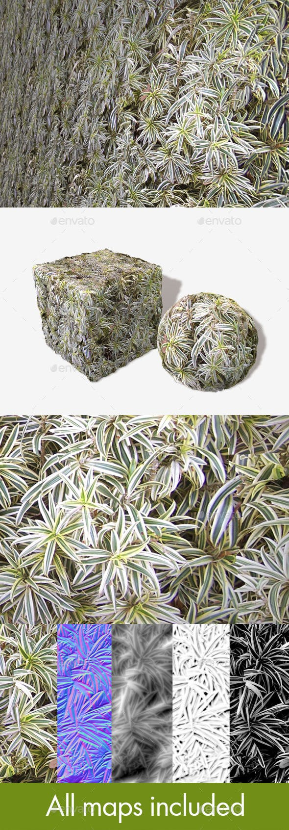 Spider Plants Seamless Texture - 3DOcean Item for Sale