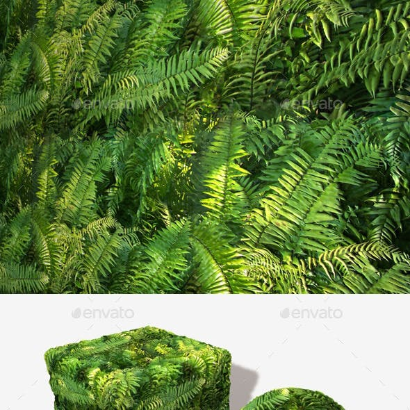 Jungle Fern Seamless Texture