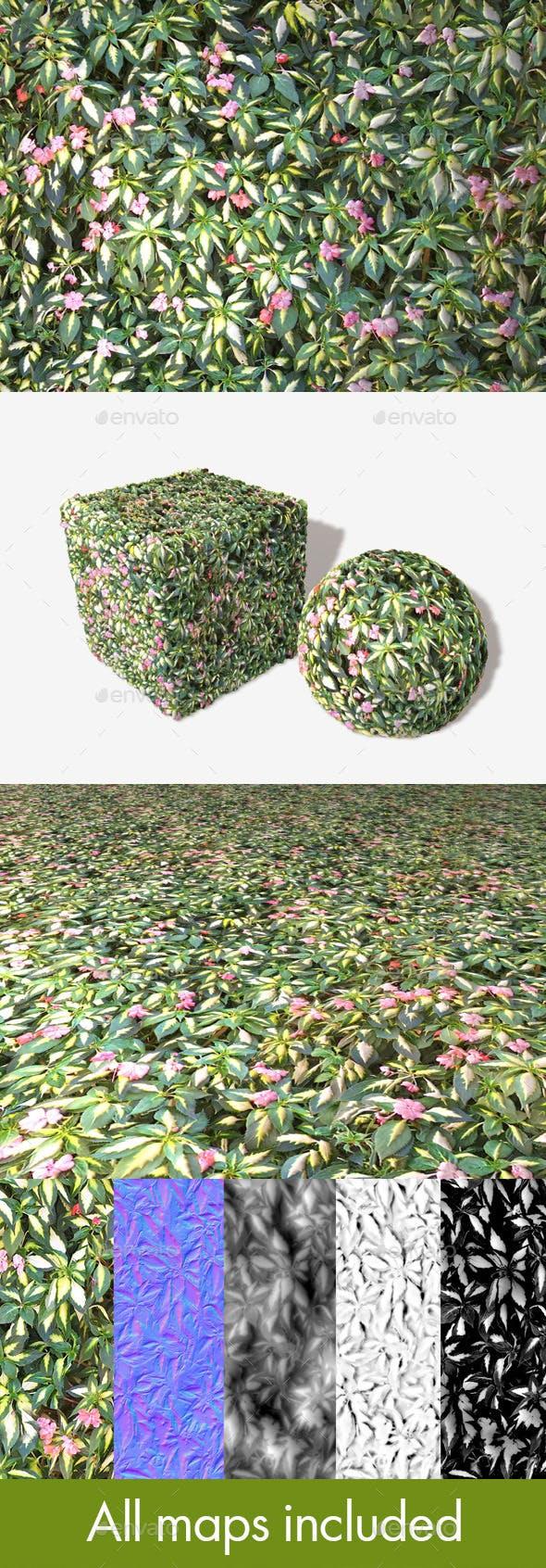 Shrub Flowers Seamless Texture - 3DOcean Item for Sale