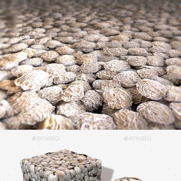 Desert Rose Stones Seamless Texture