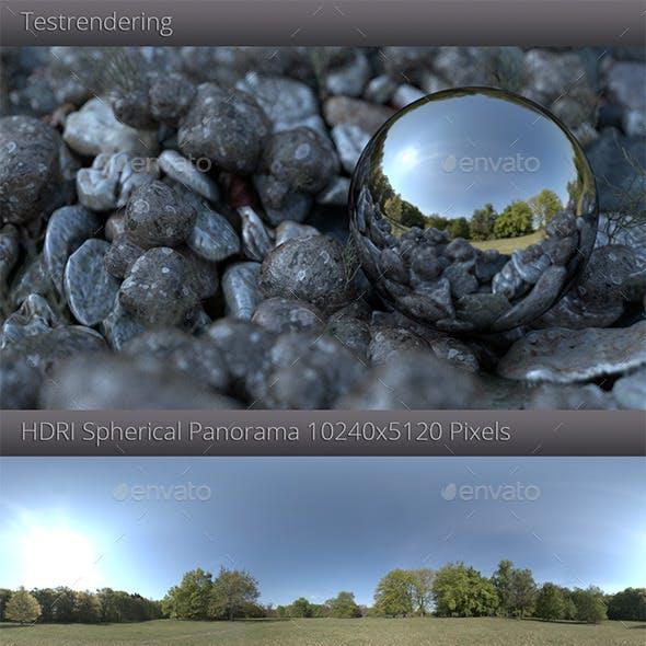 HDRI - Sunny Meadow