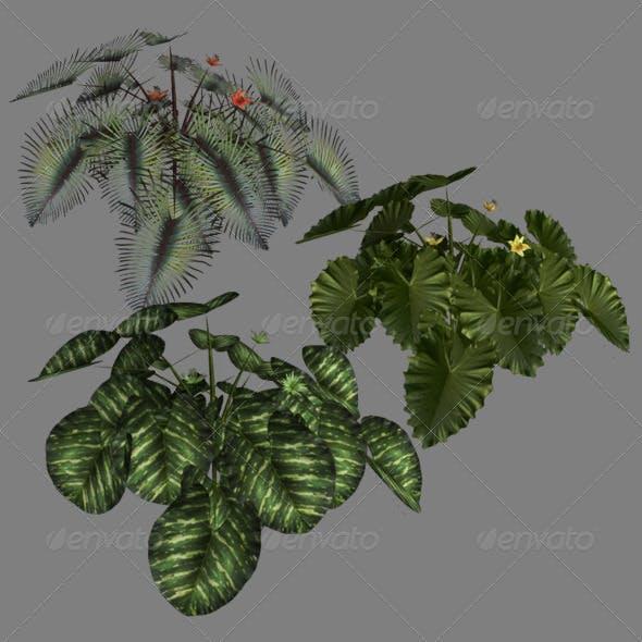 Lowpoly Plants - 3DOcean Item for Sale