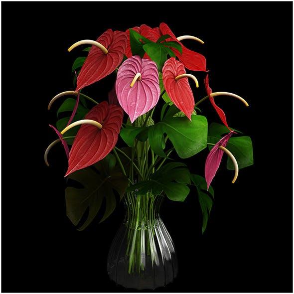 Anthurium color - 3DOcean Item for Sale