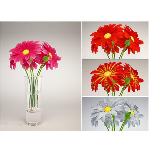 Daisy color - 3DOcean Item for Sale