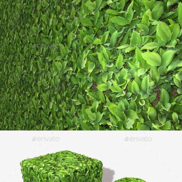 Leafy Plants Seamless Texture