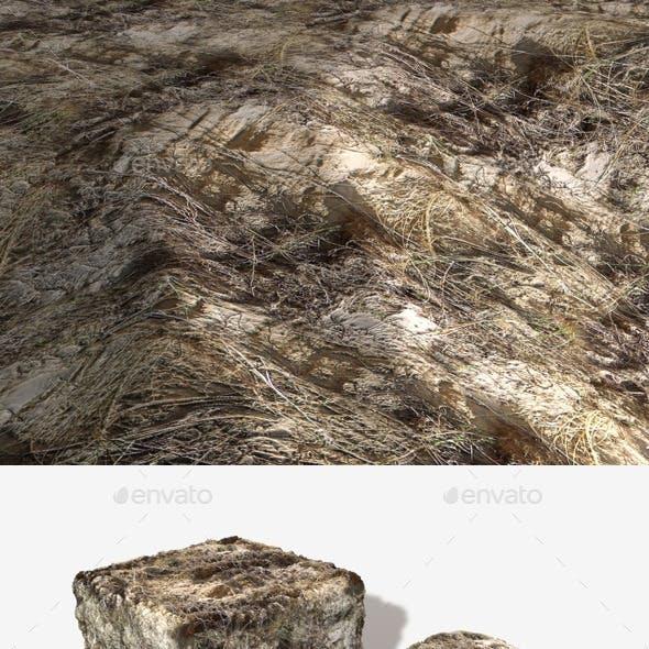 Sand Dune Seamless Texture