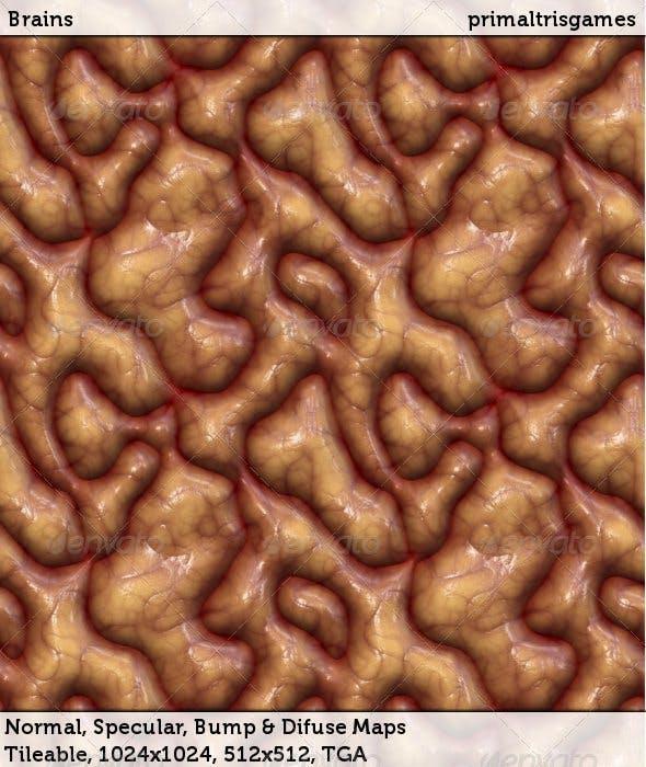 Brains - 3DOcean Item for Sale