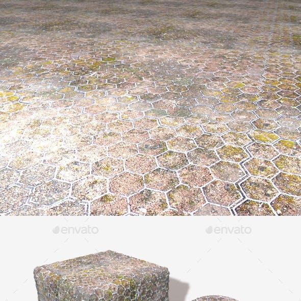 Moss Hexagons Seamless Texture